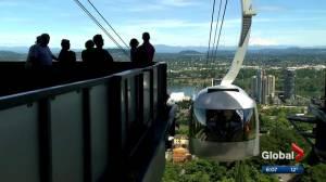 Urban gondola idea in Edmonton gaining traction