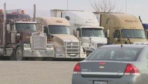 Sikh truck drivers alleging racial discrimination by Manitoba Public Insurance