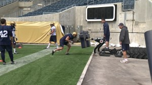 Bombers rookie camp opens Wednesday