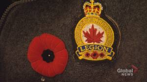 New Brunswick legion left scrambling after Costco cuts back number of days they can sell poppies