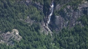 Shannon Falls search