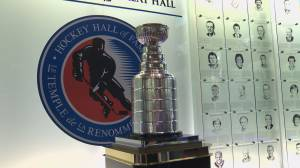 Last Canadian NHL team out of the running for Stanley cup, but fans still hopeful