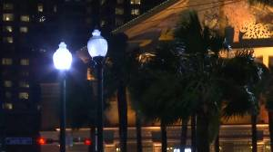 Strong winds buffet New Orleans as Tropical Storm Barry nears