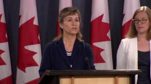 Cyberattackers targeted 2015 federal election, did not impact result
