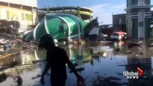 Clean-up efforts underway after Indonesia hit with devastating earthquake and tsunami