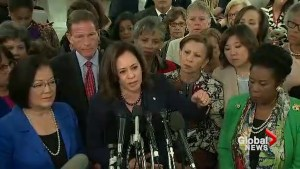 Democrats discuss strategy as Brett Kavanaugh confirmation hearing moves forward