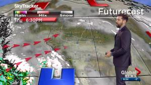 Edmonton Weather Forecast: Dec. 11
