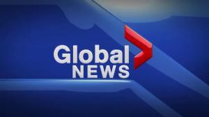 Global News Hour at 6 Edmonton: Feb. 1