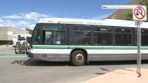 Kelowna bus driver fired for texting behind the wheel