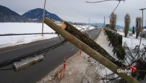 Power slowly being restored in Fraser Valley