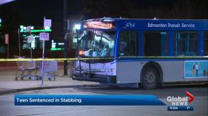 Youth who attacked Edmonton bus driver sentenced