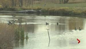 Major upgrade coming to Mallroy Drainage Basin
