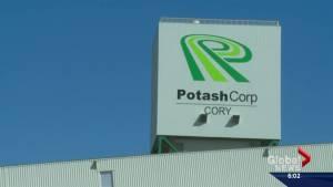 Markets react favourably to PotashCorp, Agrium merger talks