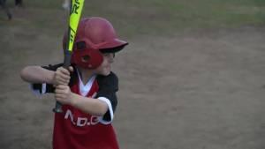 Montreal's baseball boom