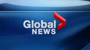 Global News Hour at 6 Edmonton: Jan. 23