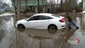 More New Brunswick communities reach flood stage
