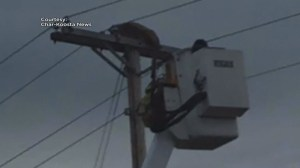 Mountain lion tranquilized after climbing telephone pole in Montana