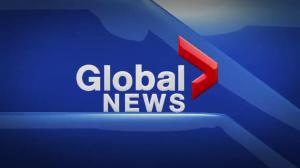 Global News at 11 Edmonton: May 7
