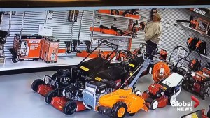 California shoplifter stuffs chainsaw down his pants