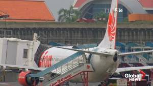 New details from the Lion Air crash emerge