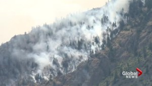 Are Wildfires the New Normal?