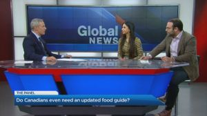 The Panel: The risk of a carbon tax recession, and the new Canadian Food Guide