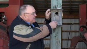 Two generations helping Saskatchewan bird species — one birdhouse at a time