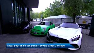 Sneak peek at the 9th annual Yorkville Exotic Car Show