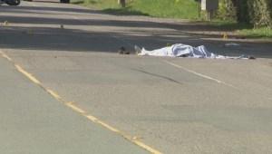 Langley crash kills motorcyclist