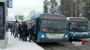 STM to receive 300 hybrid buses in 2020