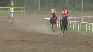 Unique horse-racing relay event takes over Enoch