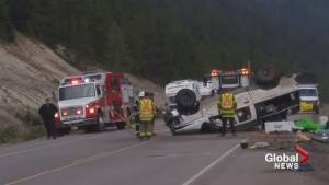 Tour bus driver catches aftermath of fatal collision on Icefield Parkway