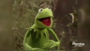 Why the voice of Kermit got canned