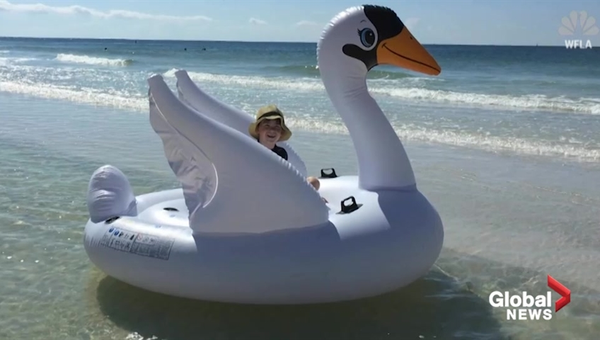 Mom, son swept out to sea on swan float