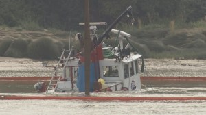 Efforts to remove sunken tug from the Fraser River continue