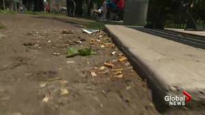 Toronto man tackling problem of cigarette butt litter