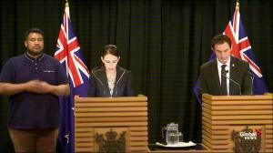 New Zeland PM announces ban of 'military-style' semi automatic weapons, assault rifles