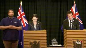 New Zeland PM announces ban of 'military-style' semi automatic weapons, assault rifles (03:13)