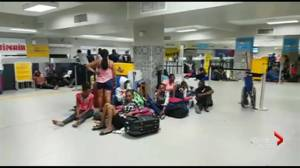 Travellers stranded after violence grounds flights in Haiti