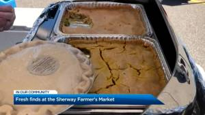 Trying chicken pot pie from the Sherway Farmers' Market