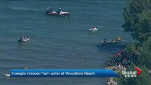 5 people rescued from water at Woodbine Beach