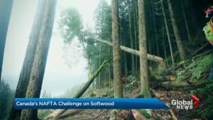 Canada's NAFTA challenge on softwood