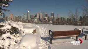 Census 2016: Calgary named fastest growing city, but numbers deceiving
