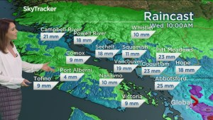 BC Evening Weather Forecast: Jan 22