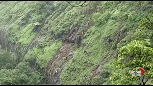 Over 30 people feared dead after bus falls into deep gorge in India