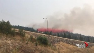 Spallumcheen wildfire contained