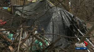 More homeless camps popping up in Edmonton