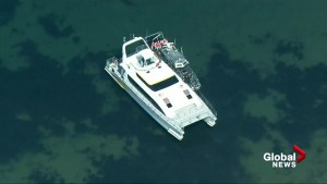 Victoria-based whale watching boat hits rock