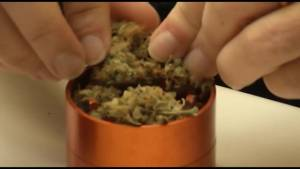 Kingstonians weigh in on provinces new plans for marijuana sales