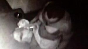 California 'Bra Bandit' caught on camera